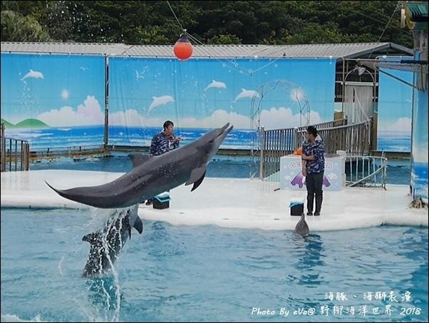 野柳海洋世界-39.jpg