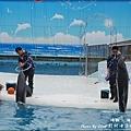 野柳海洋世界-43.jpg