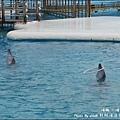 野柳海洋世界-42.jpg