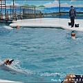 野柳海洋世界-45.jpg