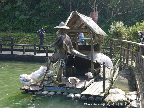 長埤湖-12.jpg