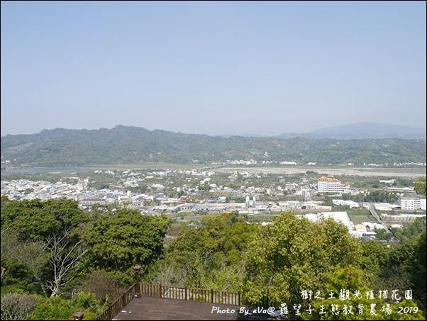 羅望子-26.jpg