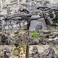 郭叔叔野生獼猴園-01.jpg