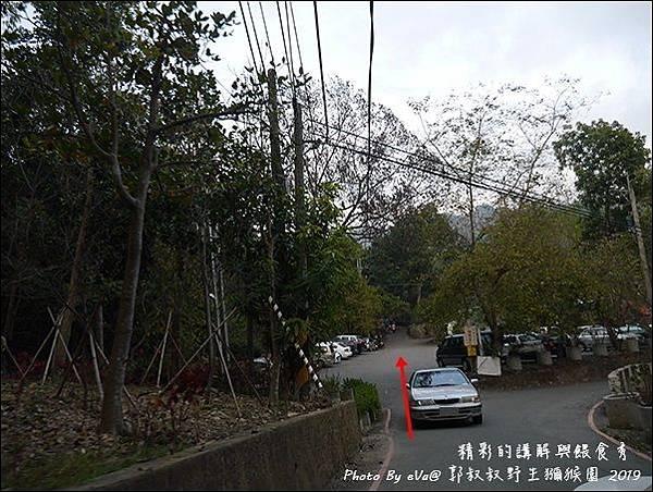 郭叔叔野生獼猴園-03.jpg