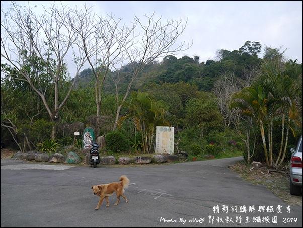 郭叔叔野生獼猴園-11.jpg
