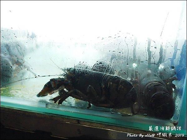 呷蝦米-05.jpg