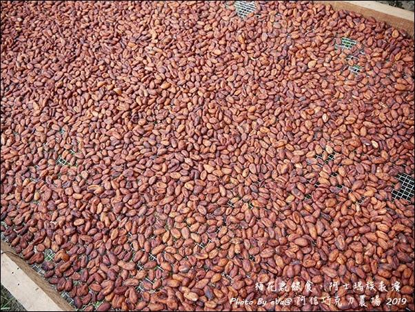 阿信巧克力農場-22.jpg