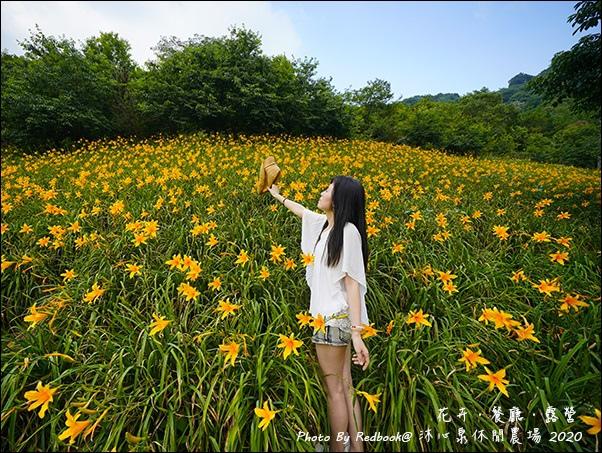 沐心泉-31.jpg