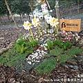 深耕寵物森林園區-25.jpg