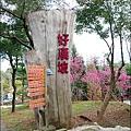 櫻花鳥森林-04.jpg