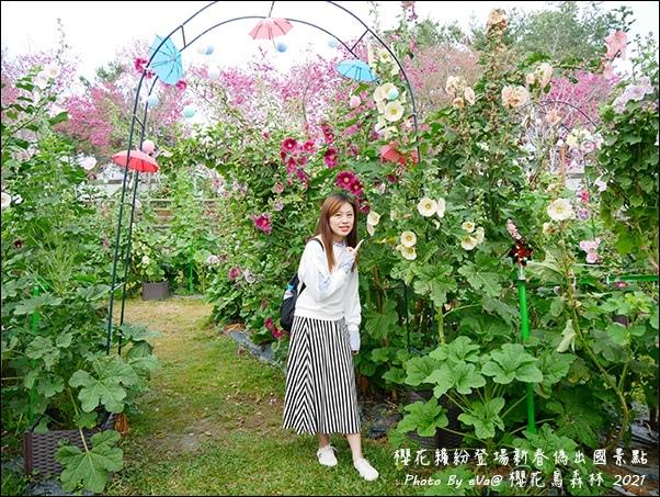 櫻花鳥森林-12.jpg