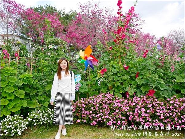 櫻花鳥森林-11.jpg