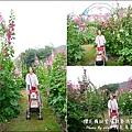 櫻花鳥森林-16.jpg