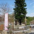 櫻花鳥森林-27.jpg