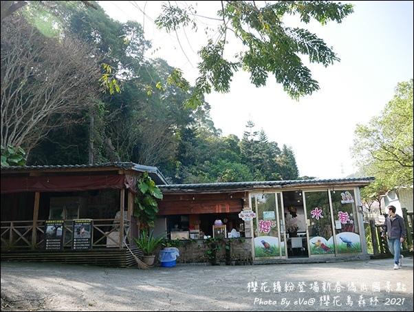櫻花鳥森林-32.jpg