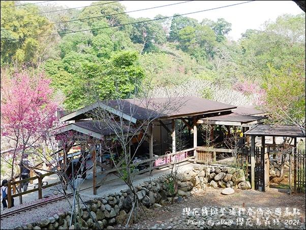 櫻花鳥森林-47.jpg