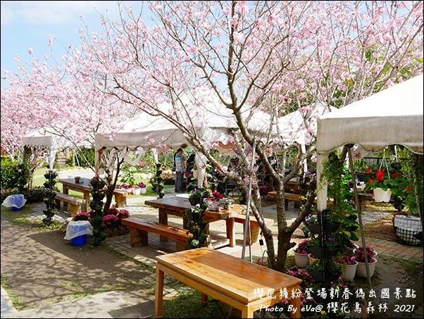 櫻花鳥森林-65.jpg