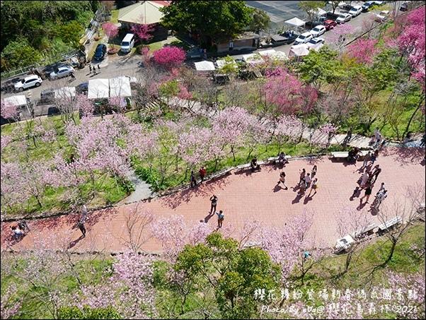 櫻花鳥森林-88.jpg