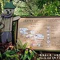 薰衣草森林-13.jpg