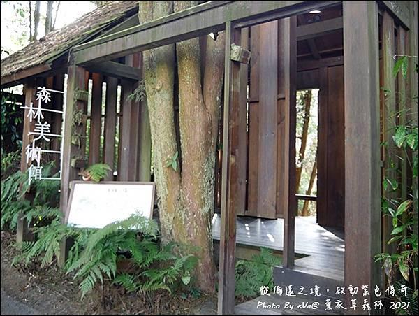 薰衣草森林-31.jpg