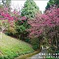 薰衣草森林-36.jpg