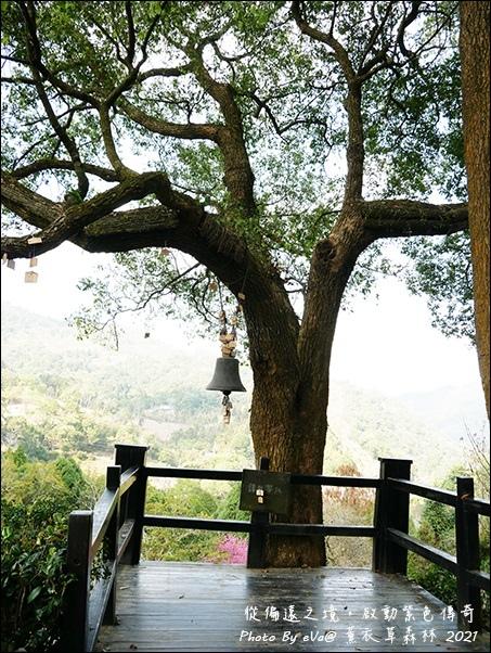 薰衣草森林-44.jpg