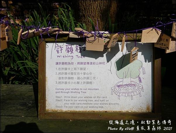 薰衣草森林-42.jpg