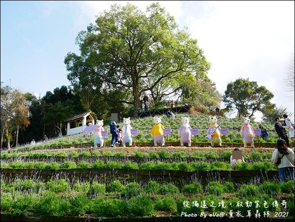 薰衣草森林-52.jpg