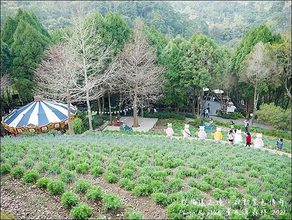 薰衣草森林-47.jpg