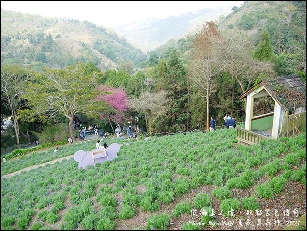 薰衣草森林-45.jpg