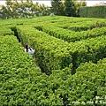 探索迷宮歐式莊園-45.jpg