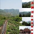 太興岩景觀茶園步道-01.jpg