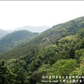 太興岩景觀茶園步道-04.jpg