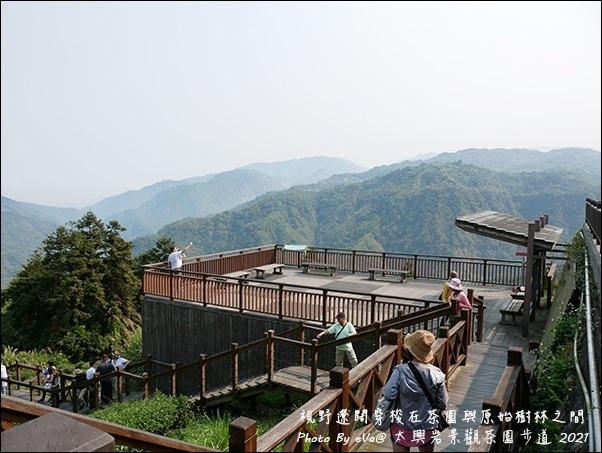 太興岩景觀茶園步道-03.jpg