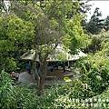 太興岩景觀茶園步道-09.jpg