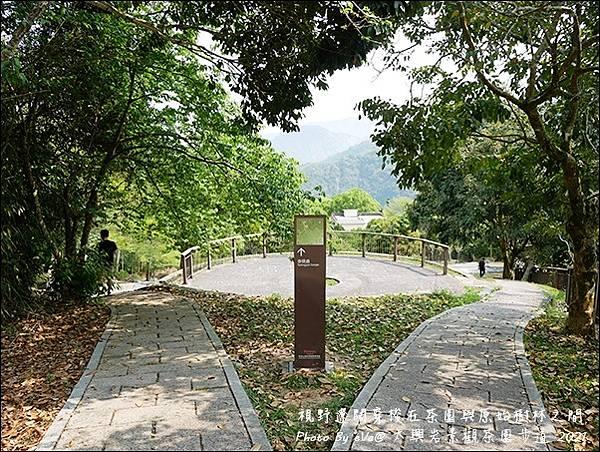 太興岩景觀茶園步道-15.jpg