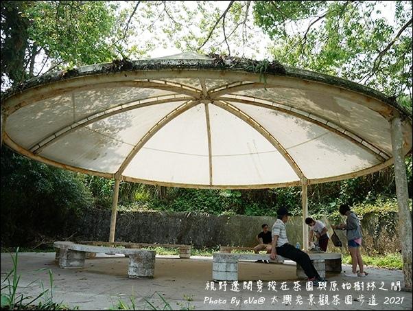 太興岩景觀茶園步道-20.jpg