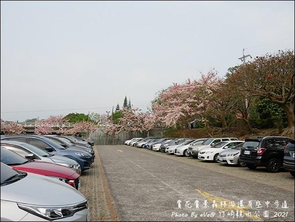 竹崎親水公園-03.jpg