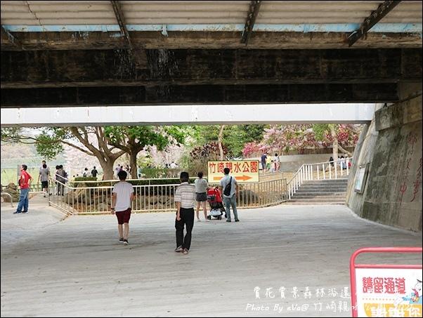 竹崎親水公園-06.jpg