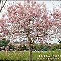 竹崎親水公園-08.jpg