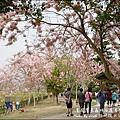 竹崎親水公園-07.jpg