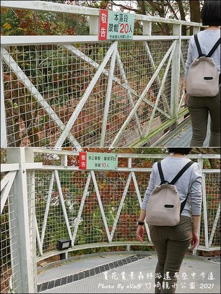 竹崎親水公園-17.jpg