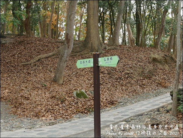 竹崎親水公園-20.jpg