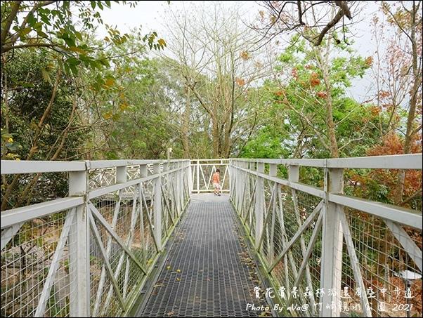 竹崎親水公園-16.jpg