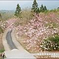 竹崎親水公園-28.jpg