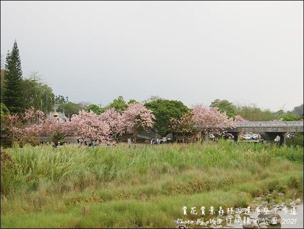 竹崎親水公園-36.jpg