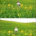 虎山巖金針花-21.jpg