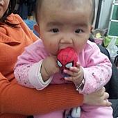 C360_2013-01-26-16-45-11