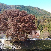 2011-10-28 11.19.42.jpg