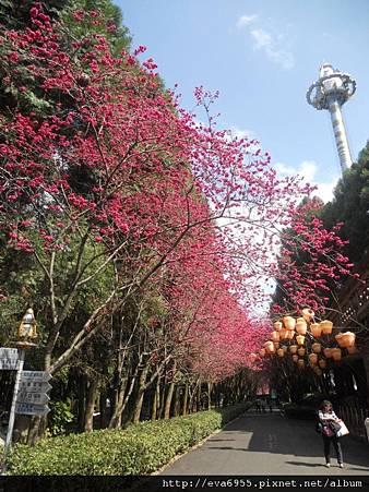 九族文化村 (26).jpg